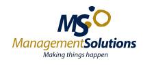 Logo de MANAGEMENT SOLUTIONS FRANCE SARL