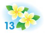 Logo Spring 13 Release Salesforce