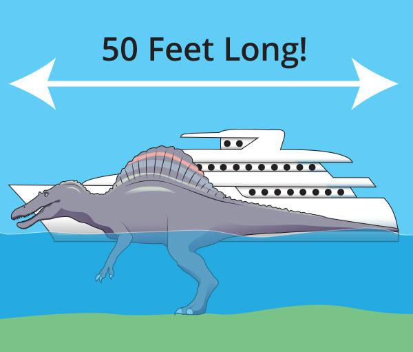 spinosaurus-length