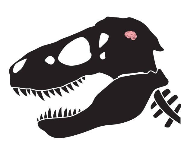 dinosaur-skull-brain