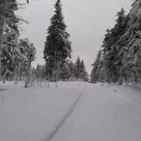 Cesta Nad Bukačkou.jpg