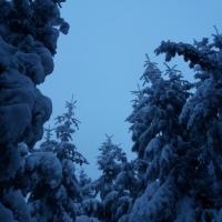 Stmívání na Kamenné vrchu.jpg