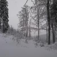 Cesta na Studený vrch.jpg