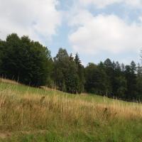 2 - Žebrákovský kopec.jpg