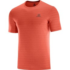 Salomon Men's XA Tee | Valiant Poppy / Heather