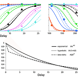 Matlab code for estimating temporal discounting functions via