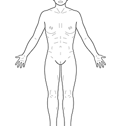 Hannover Body Template