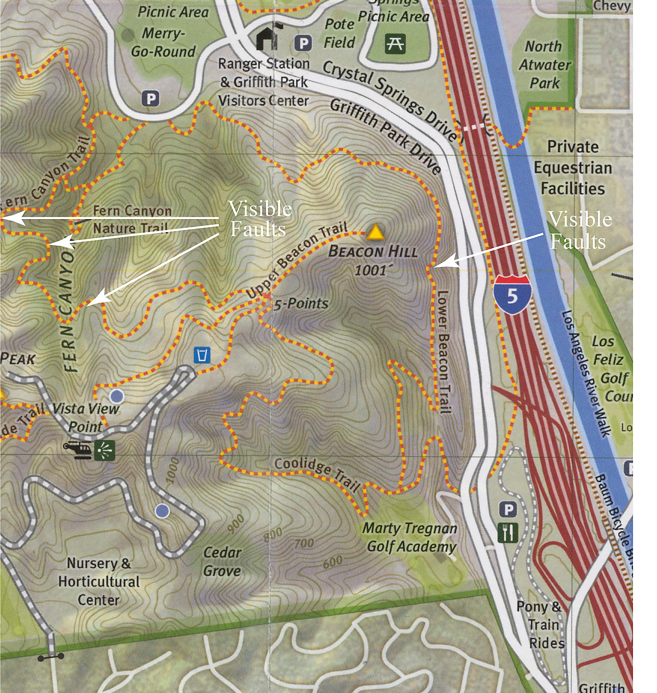 Griffith Park Los Angeles Map.Map Of Some Visible Faults Near Beacon Hill In Griffith Park Los