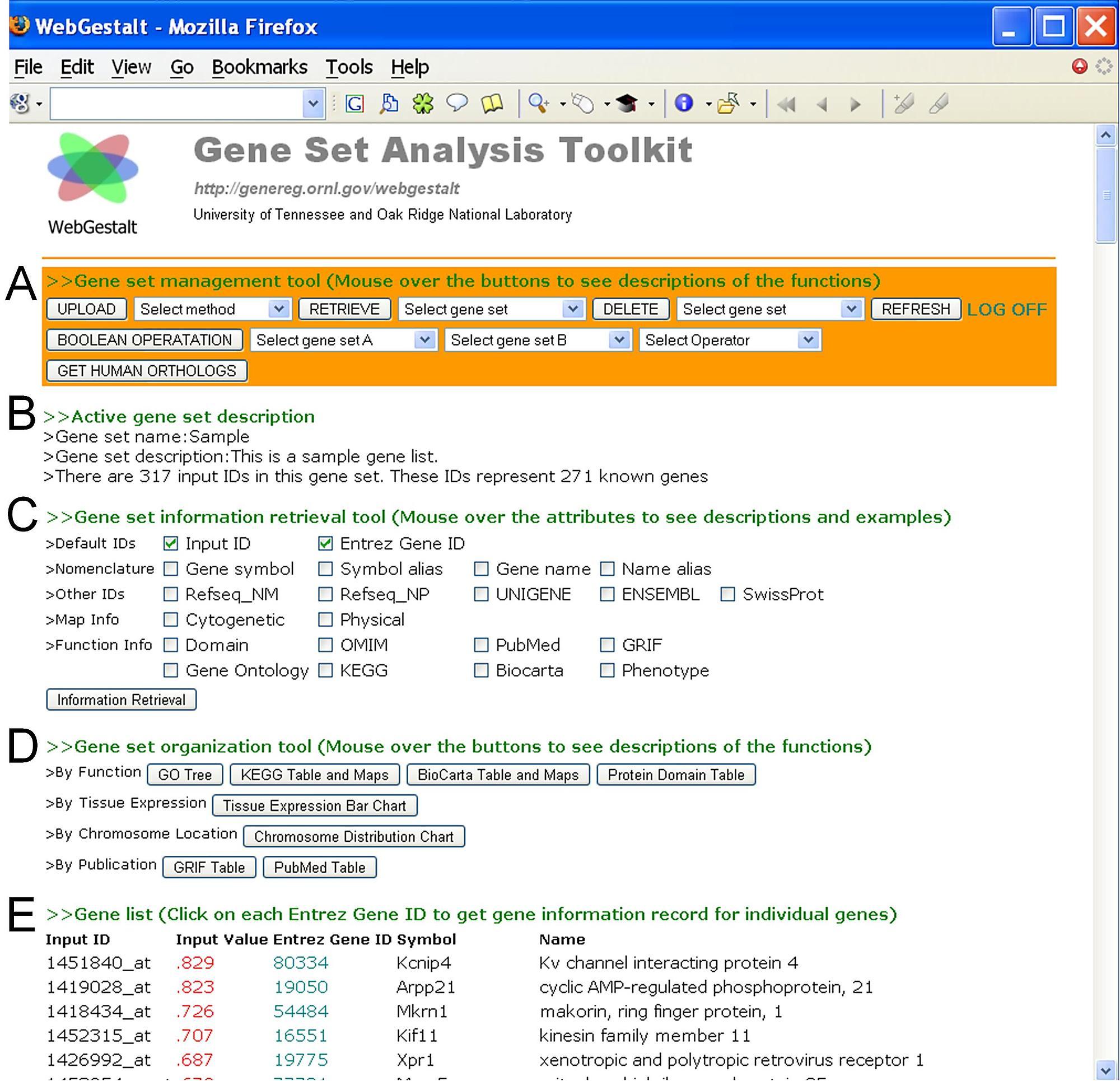 Schematic overview of WebGestalt