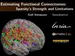 Estimating Functional Connectomes: Sparsity's Strength and Limitations
