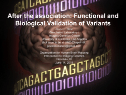 After the association: Functional and Biological Validation of Variants