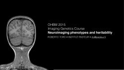 Neuroimaging phenotypes and heritability