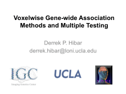 Voxelwise Gene-wide Association Methods and Multiple Testing