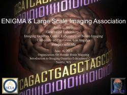 ENIGMA & Large Scale Imaging Association