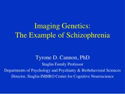 Imaging Genetics: The Example of Schizophrenia