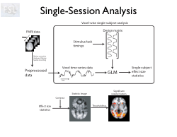 FMRI Pre-Processing and ModelBased Statistics (2)