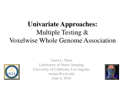 Univariate Approaches: Multiple Testing & Voxelwise WGA