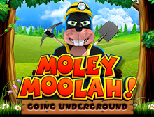 Moley Moolah Going Underground