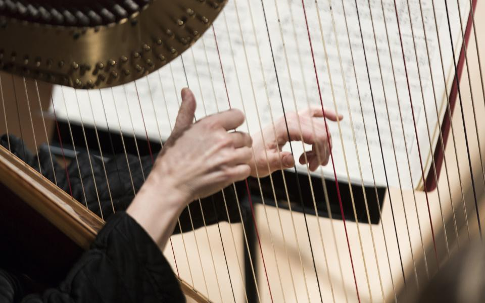 A musician playing the harp