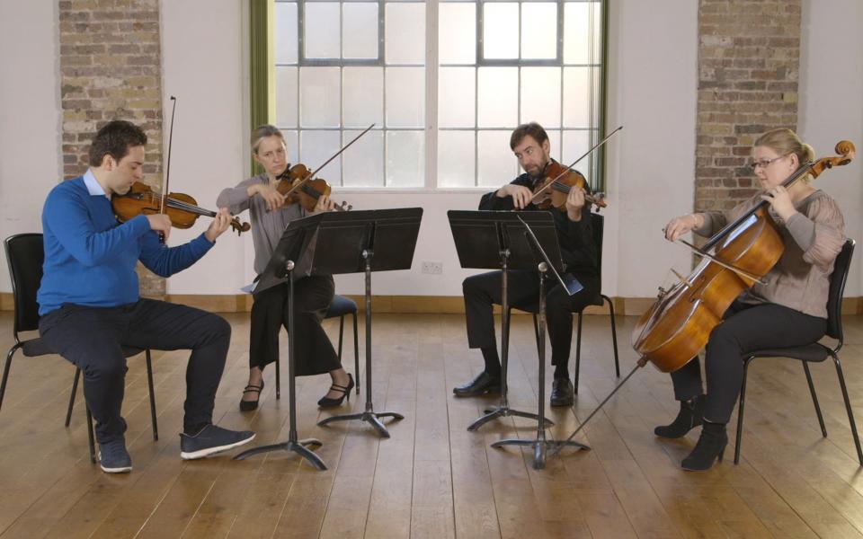 Plhilharmonia small ensemble playing