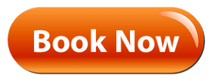 salon-book-now-button