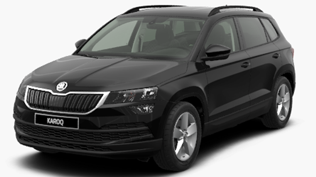 skoda karoq 1 6 tdi 116 business neuve diesel 5 portes lambres lez douai hauts de france. Black Bedroom Furniture Sets. Home Design Ideas