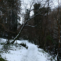 Cladagh-Glen-011