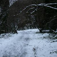 Cladagh-Glen-012