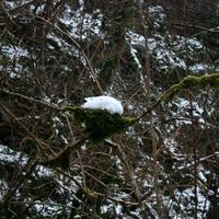 Cladagh-Glen-054
