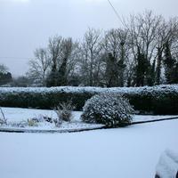 First-Snow-003