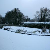 First-Snow-004