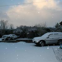 First-Snow-005