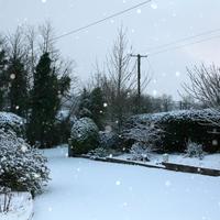 First-Snow-006