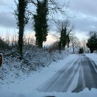 First-Snow-008