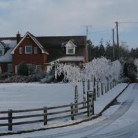 First-Snow-127