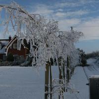 First-Snow-133