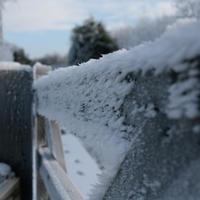 First-Snow-135
