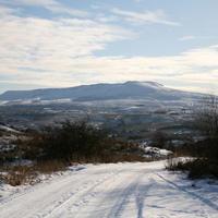 First-Snow-219