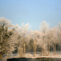 First-Snow-224