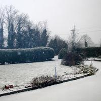 First-Snow-232