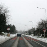First-Snow-233