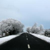 first-snow-195