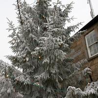 first-snow-197