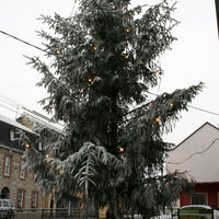 first-snow-199