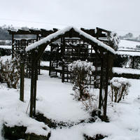 17th-February-Snow-004
