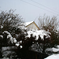 17th-February-Snow-015