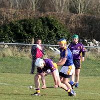 028-Roscommon Gaels 101
