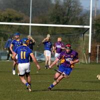 039-Roscommon Gaels 176