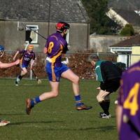 041-Roscommon Gaels 179