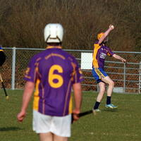 042-Roscommon Gaels 180